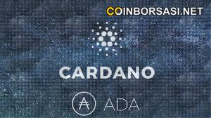 Cardano ada coin yorum